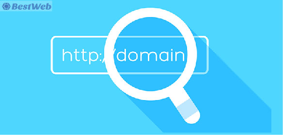 Domain Name Selection Guidelines